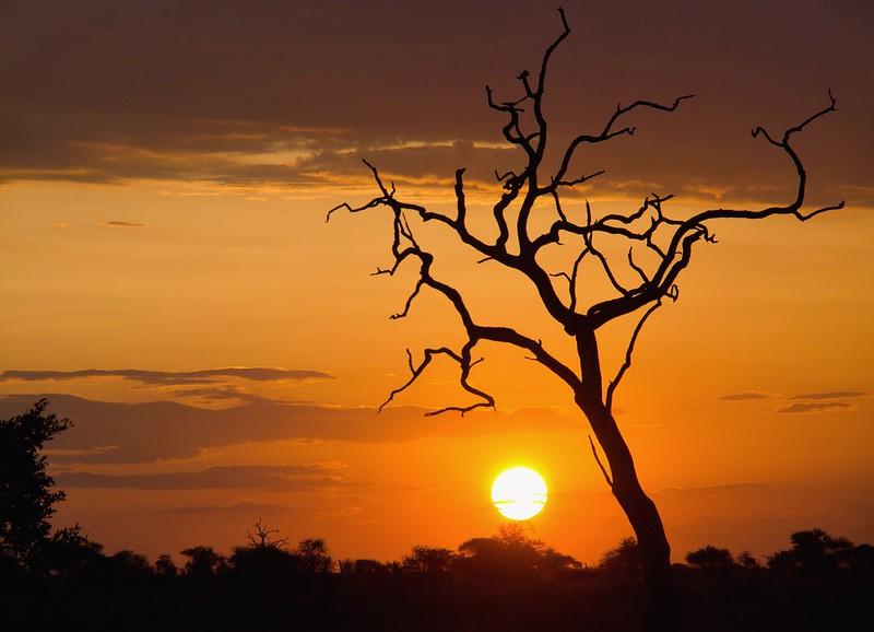 Por el norte de SUDÁFRICA. Montañas, playas, fauna y sus gentes