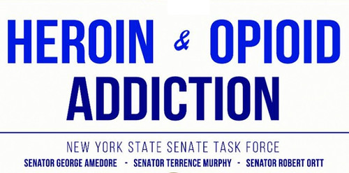 The Cove center offers advice to New York heroin task force thumbnail