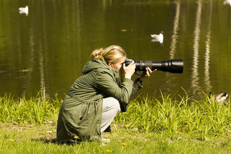 The Birdographer