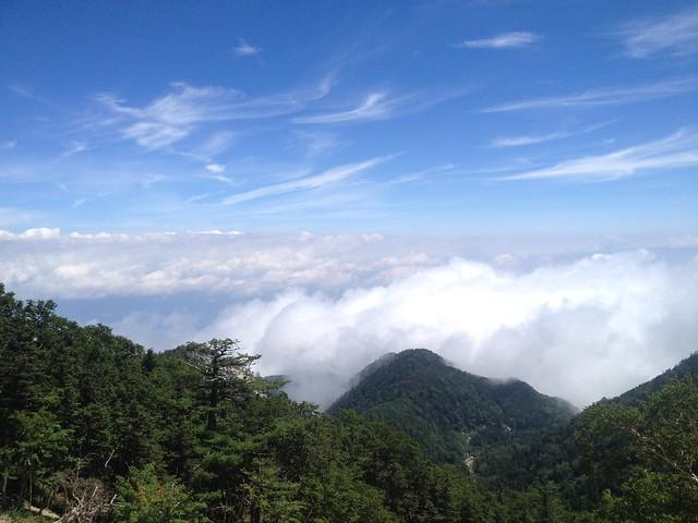 鳳凰山 地蔵岳から雲海