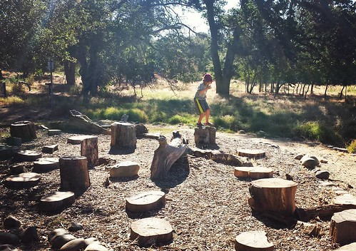 Natural obstacle course #summer #boys #wild #California #sacramento #summersolstice #waldorfhome #showyourslow #movement #learning