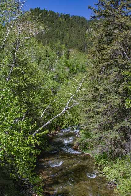 28039070412 b3baf033cf z Spearfish Falls Trail