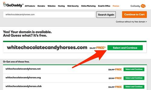 GoDaddy_Domain_Name_Search_Tool.jpg