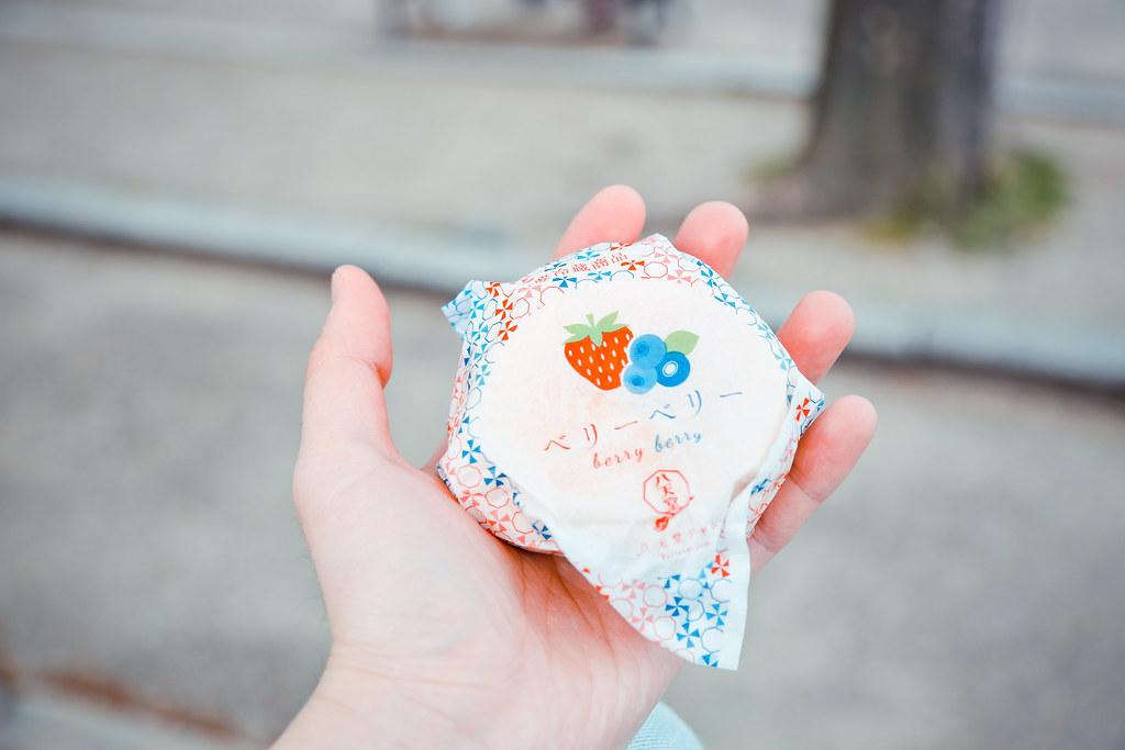 2015 April Kansai 197