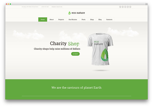 Eco-Friendly WordPress Themes
