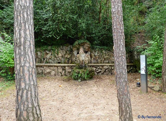 Jardins Artigas (La Pobla de Llillet) -07- Font del Bou -02- (12-10-2016