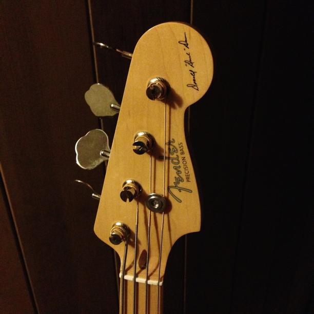 Bass Strings Too Long : dr legend flatwound tension texture ~ Vivirlamusica.com Haus und Dekorationen