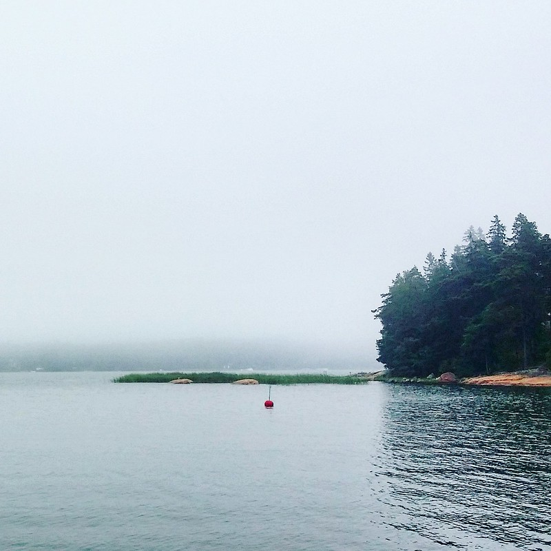 Fog at the Island