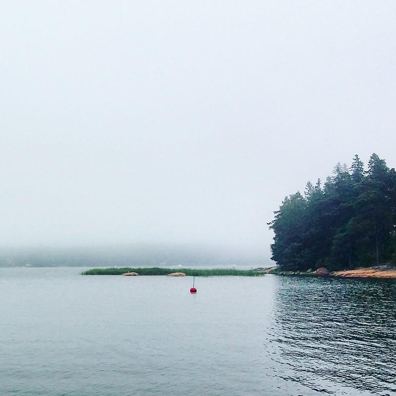 Fog at the Island