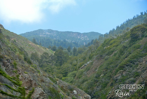 160702d CA State Route 1 Lookout _56