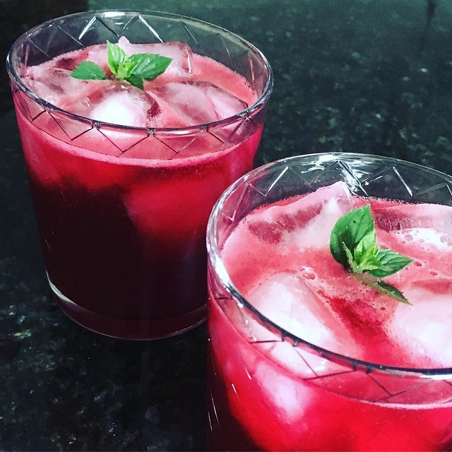 Wild grape cocktails! 🍇🍸