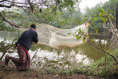 Fish farmer casting his net. Khulna, Bangladesh. Photo by Jeya