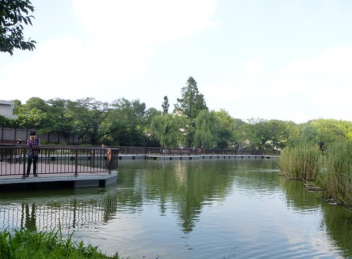 jp16-Tokyo-Ueno-Parc-j2 (6)
