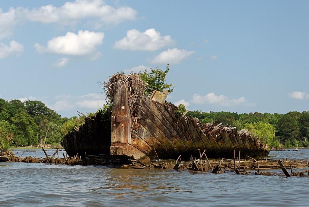 Wooden Island