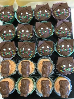 Cupcake day for the RSPCA 2016