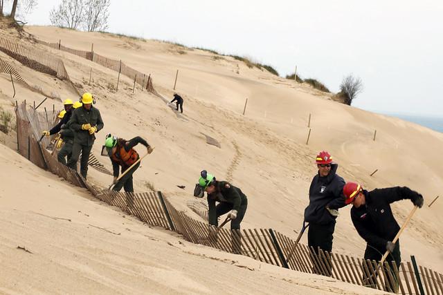 Mount Baldy_dune Restoration