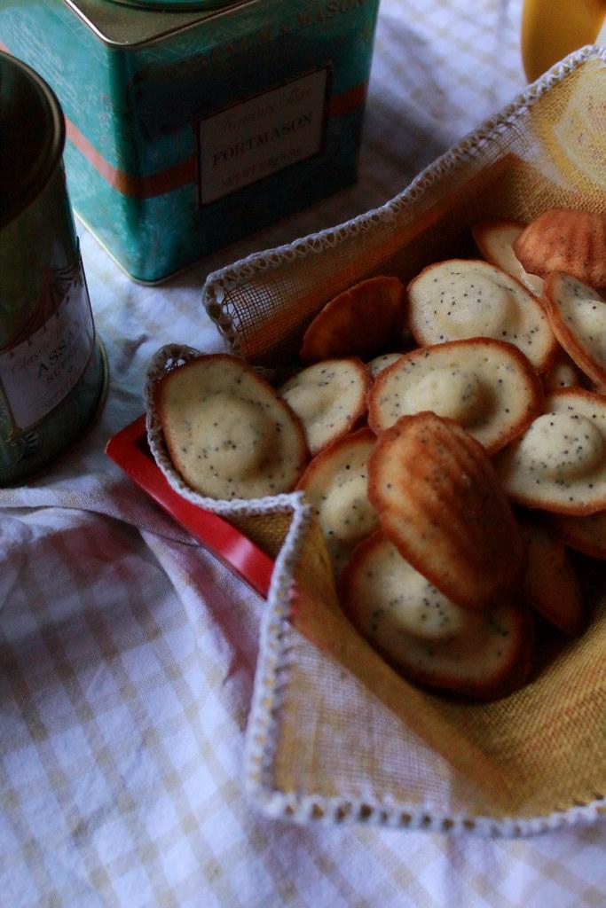 madeleines al mosto e semi di papavero