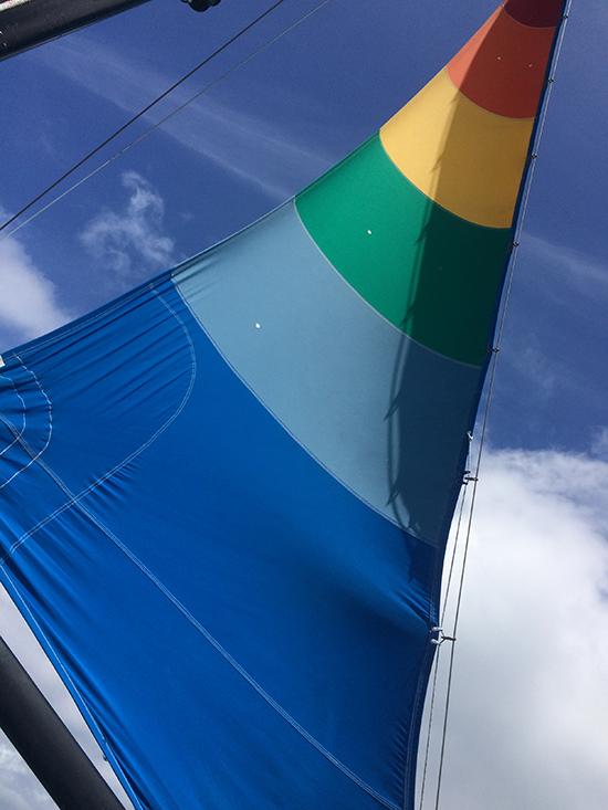 catamaran 11