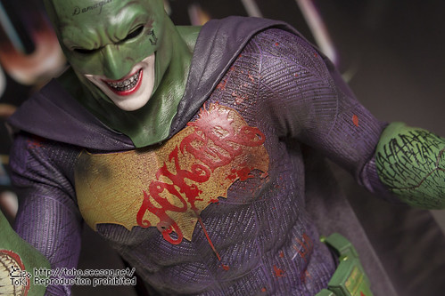 BATMAN100_HotToys_2-211