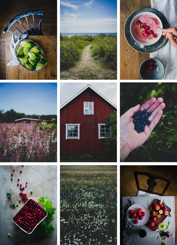 July & August | Cashew Kitchen
