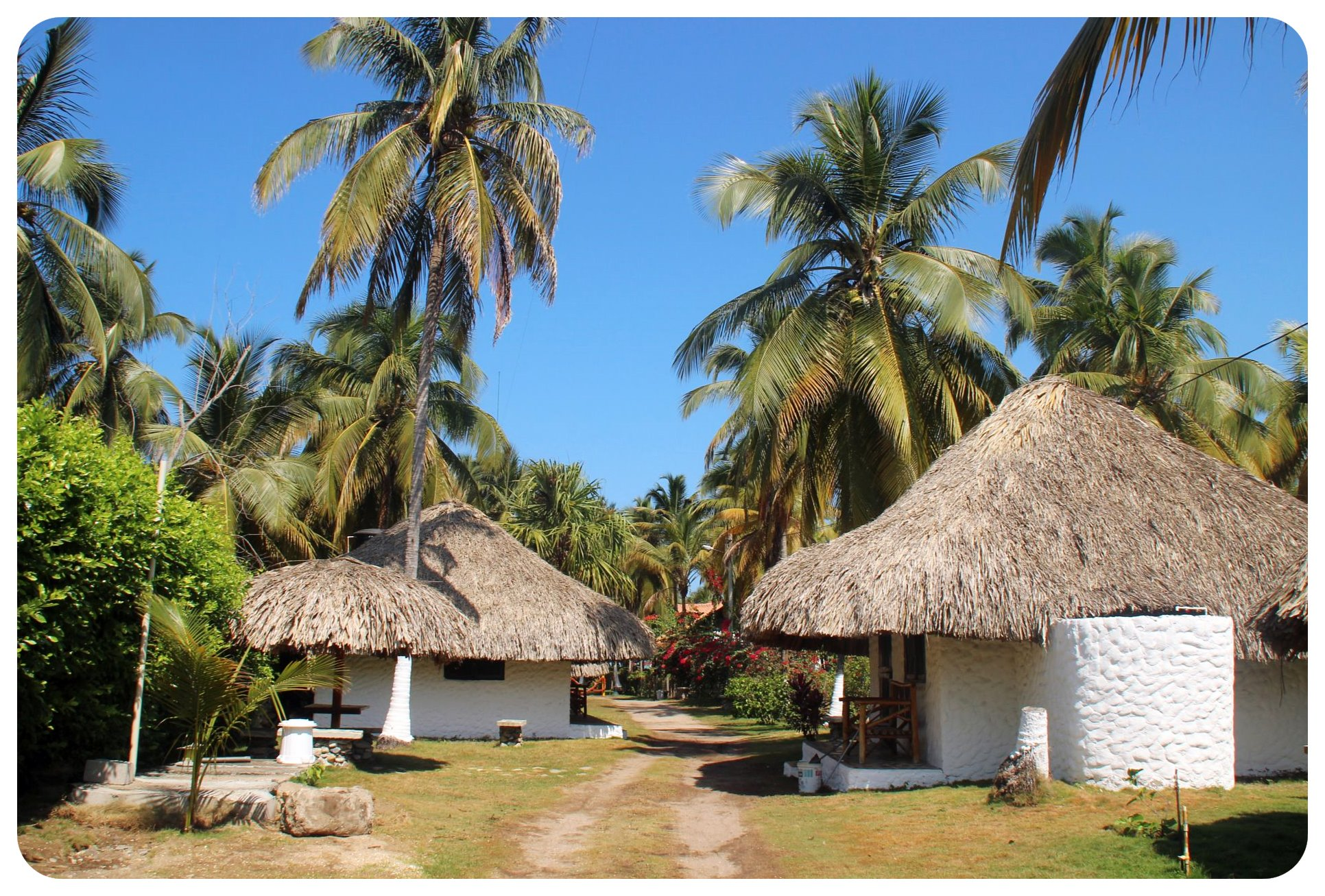 palomino bungalows colombia