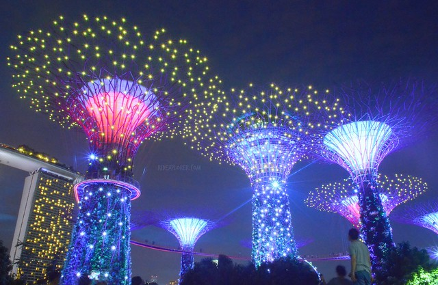 singapore itinerary gardens by the bay