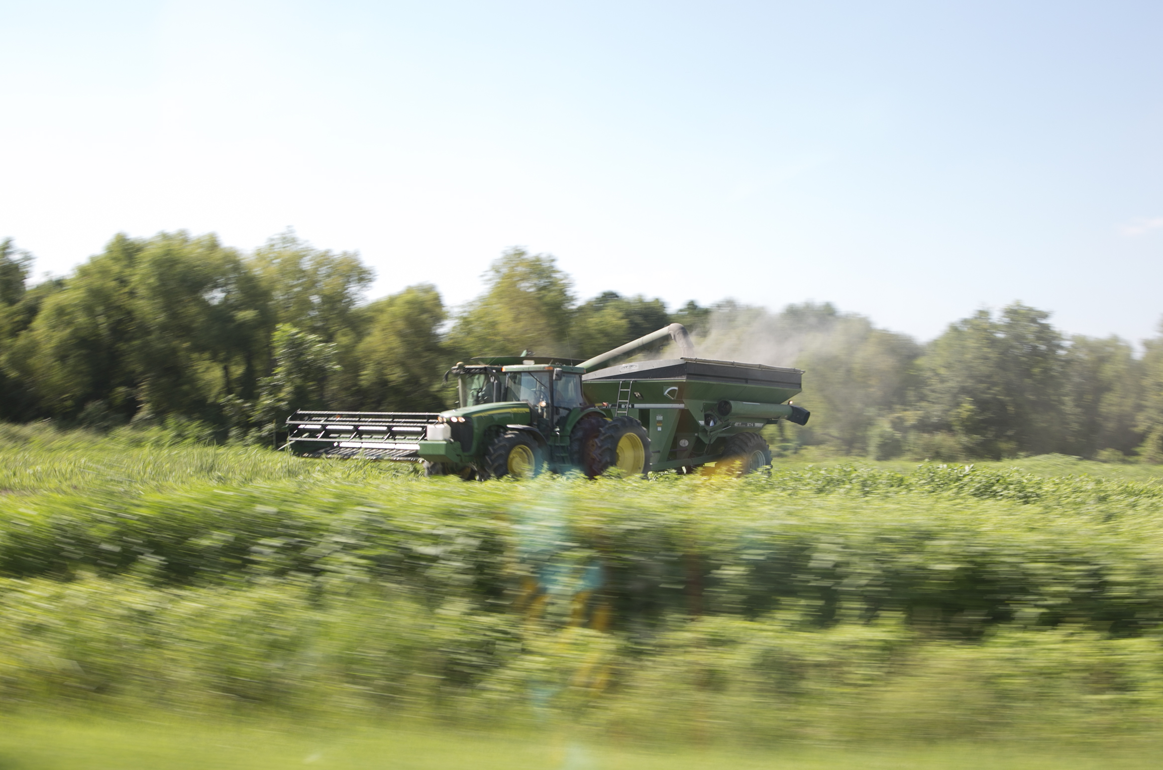 8-27-2016 Harvest