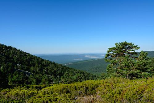 Vistas sobre la Sierra de Cabrejas