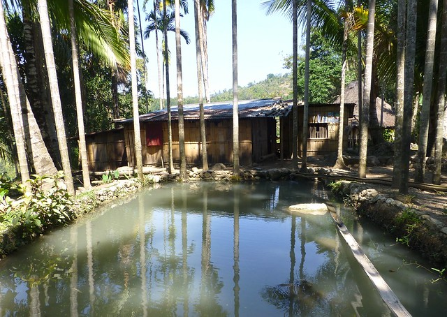A small-scale homested fish pond in Same, Timor-Leste. Photo by Jharendu Pant, 2012.
