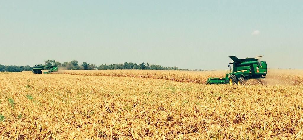 HPH-2016-Corn Harvest (Ryan)