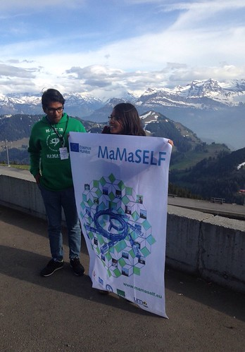 Status meeting Mamaself Rigi 2016