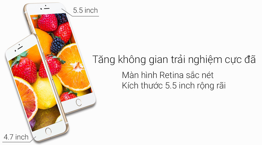 iHub Tuấn Anh - iPhone 6 Plus