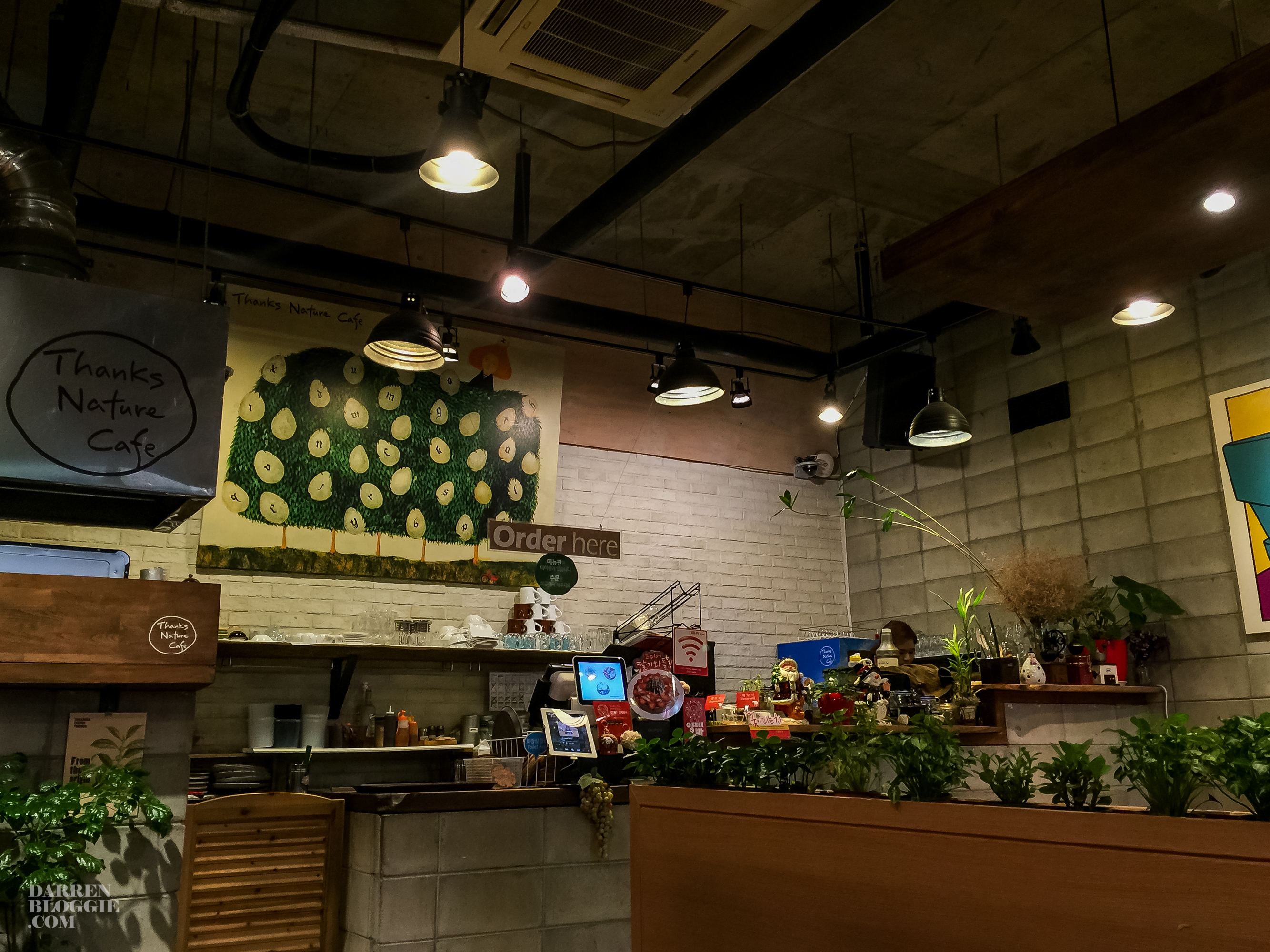 thanks-nature-cafe-sheep-hongdae-seoul-korea-6