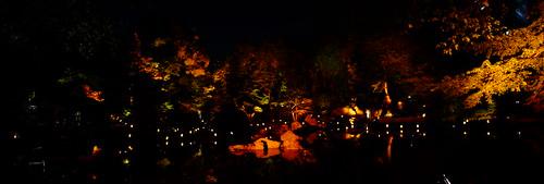 Shinike garden live music