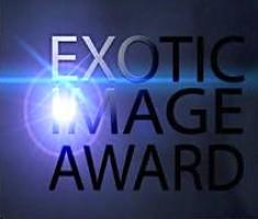 Exotic award/