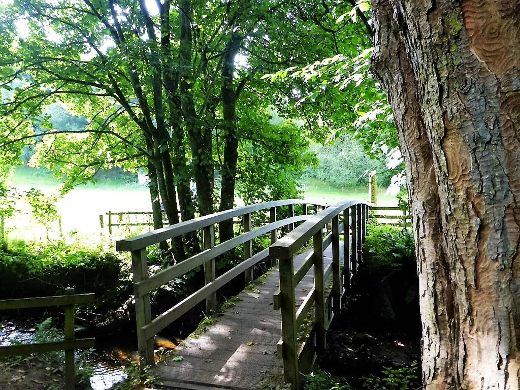 Wooden Bridge, Clyde Walkway.