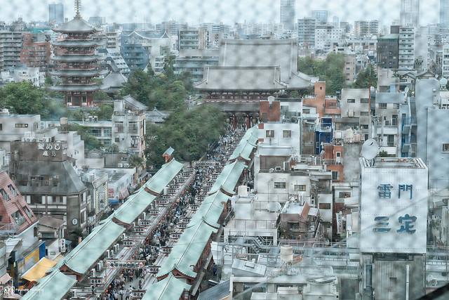 初夏,東京遊拍 | 32