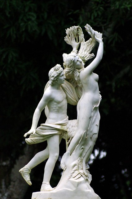 Apolo y Dafne de Bernini.