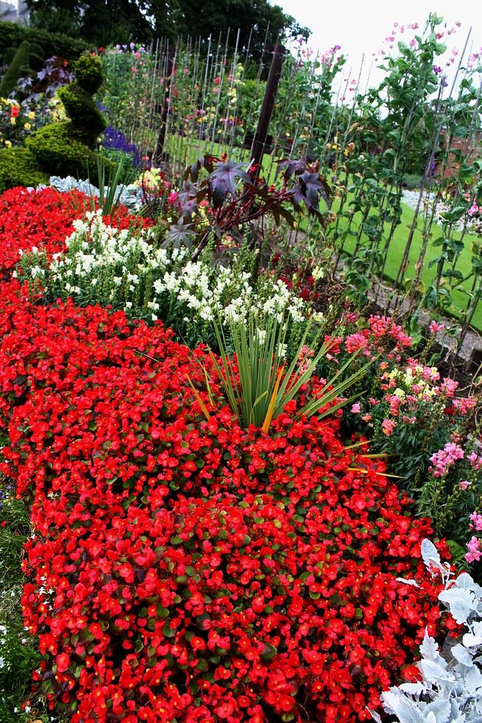 Colourful border at House for Art Lover garden, Glasgow.