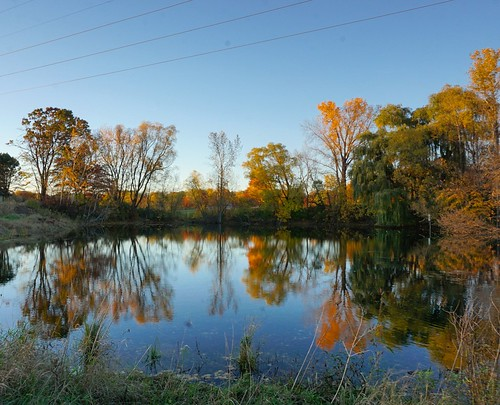 Fall reflections #thomaslakepark
