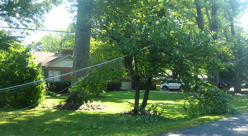 20120630 0856 - storm damage while yardsaleing - impossibru yardsale lies beyond - IMG_4533 | by Rev. Xanatos Satanicos Bombasticos (ClintJCL)