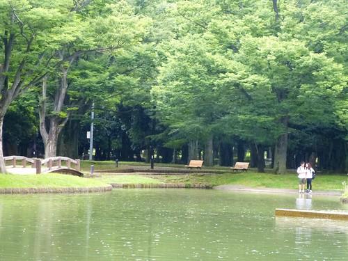 jp16-Tokyo-Parc Yoyogi (10)
