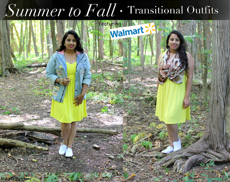 Summer to Fall Transition1