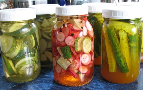 refrigerator pickles | by christmasnotebook