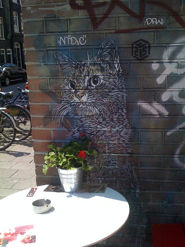 Stencil - C215 - Amsterdam | by The G. Canyon in a Crack