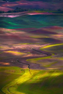 The Palouse_Tapestry Of Colors | by kevin mcneal