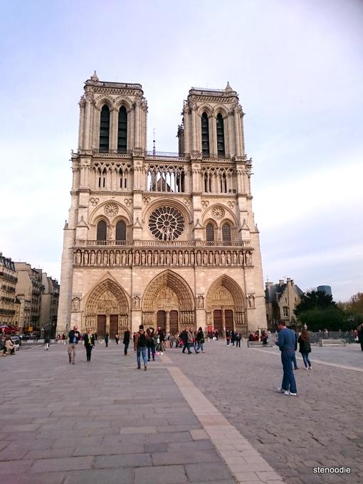 Cathedral Basilica Notre Dame of Paris 2016