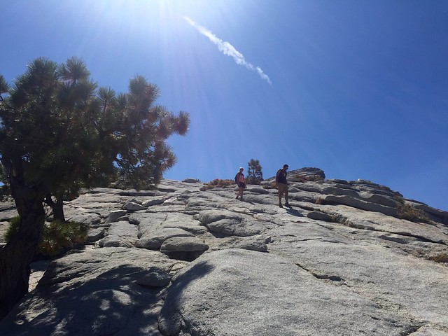 Half Dome trail