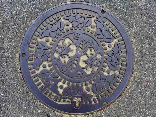 Matama Oita, manhole cover 2 (大分県真玉町のマンホール2)