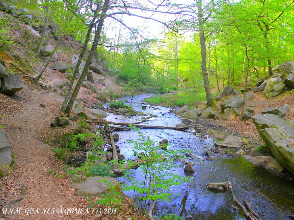 Chaos rocheux gorge cascade vall e des vaux de cernay for Parc naturel yvelines